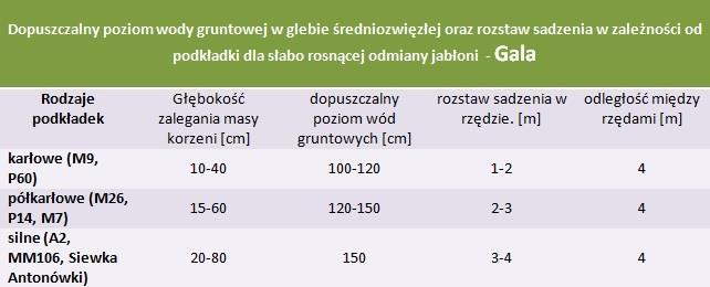Jabłoń Gala - rozstaw sadzenia i poziom wod gruntowych.
