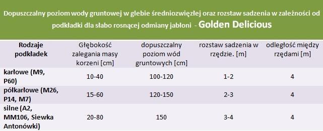 Jabłoń Golden Delicious - rozstaw sadzenia i poziom wod gruntowych.