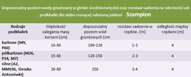 Jabłoń Szampion - rozstaw sadzenia i poziom wod gruntowych.