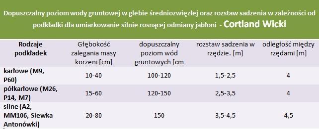 Jabłoń Cortland Wicki - rozstaw sadzenia i poziom wod gruntowych.