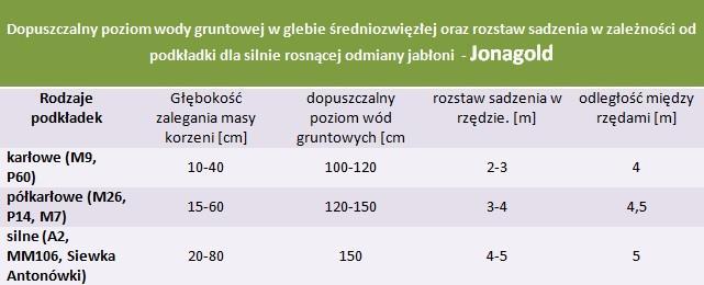 Jabłoń Jonagold - rozstaw sadzenia i poziom wod gruntowych.