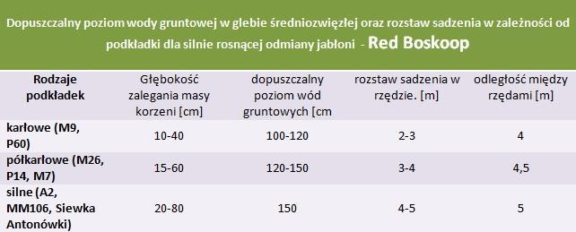 Red Boskoop - rozstaw sadzenia i poziom wod gruntowych.