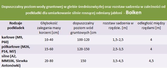 Jabłoń Boiken - rozstaw sadzenia i poziom wod gruntowych.