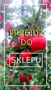 drzewkaowocowe24.pl - sklepi internetowy
