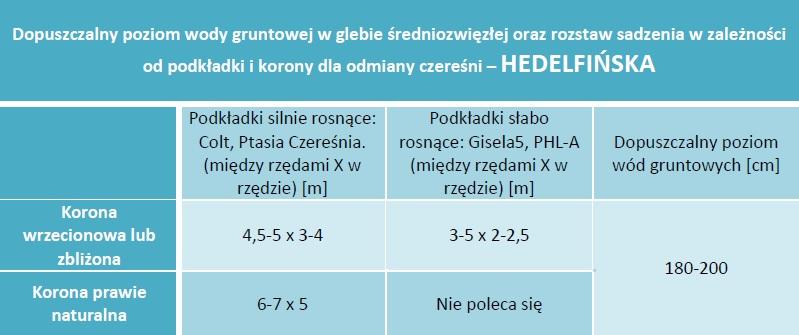 Dopuszczalny poziom wód gruntowych oraz rozstaw sadzenia - Czereśnia Hedelfińska