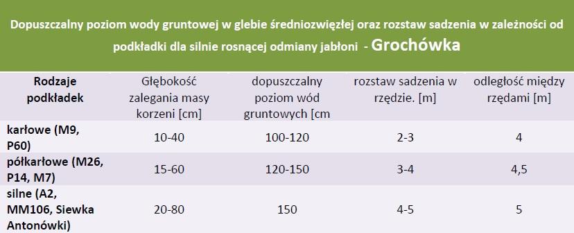 Rozstaw sadzenia i dopuszczalny poziom wód gruntowych - Jabłoń Grochówka
