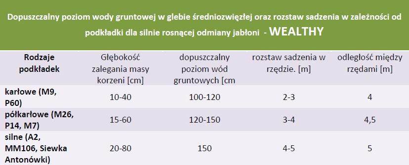 Rozstaw sadzenia i dopuszczalny poziom wód gruntowych - Jabłoń Wealthy