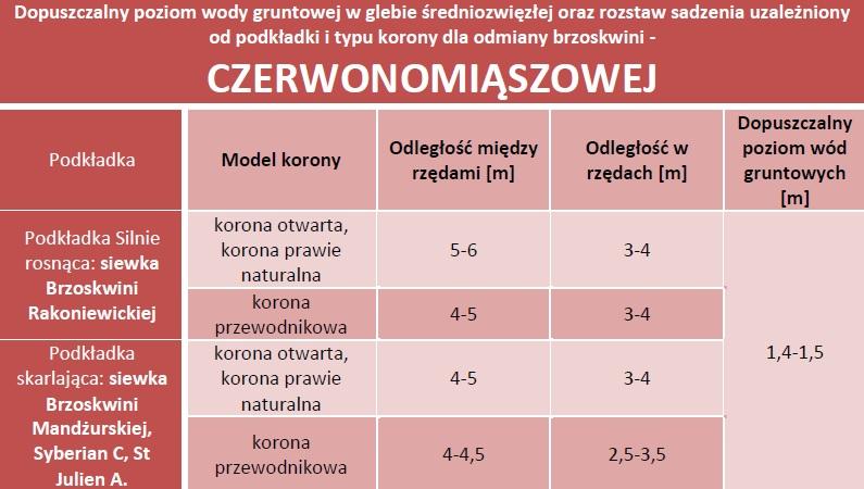 Dopuszczalny poziom wód gruntowych oraz rozstaw sadzenia - Brzoskwinia czerwonomiąższowa