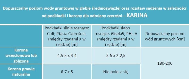 Dopuszczalny poziom wód gruntowych oraz rozstaw sadzenia - Czereśnia Karina